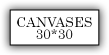 30*30 Canvases